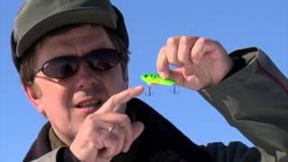 Ловля на цикаду со льда зимой