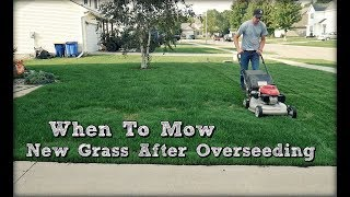 When To Mow New Grass after Overseeding and First Mow