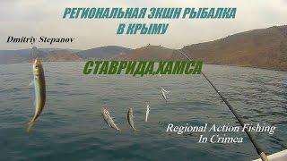 Рыбалка на ставриду в заветном крым