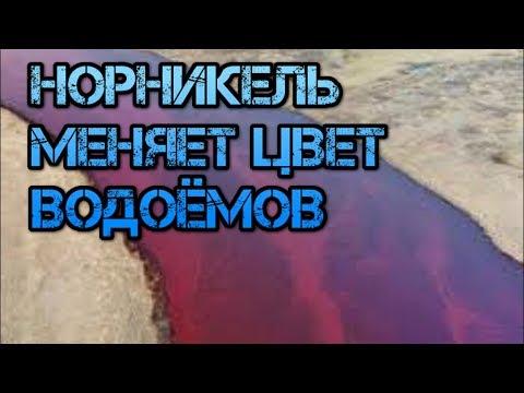 Что скрывает власть России и руководство Норникель от народа. Настоящая правда катастрофы Норильска.