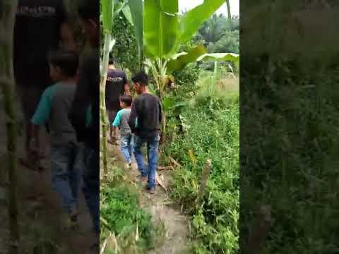 Susuri Empang, Babinsa dan Relawan Pekanbaru Kota Bertuah Salurkan Bansos ke Warga