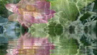 Andrea Bocelli - Il Mare Calmo Della Sera - Reflejos En El Agua