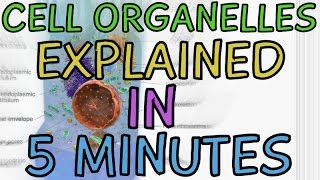 Cell Biology: Cell Organelles explained in 5 minutes!!