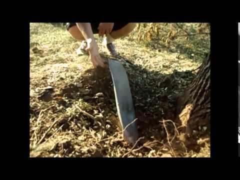 Петров андрей земли меча и магии паладин