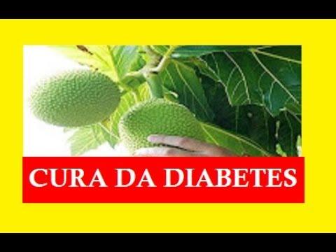 Raiz de gengibre propriedades úteis em diabetes