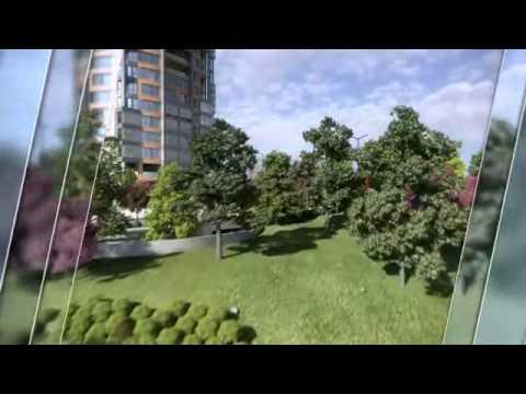 Terrace Tema Videosu