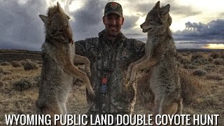 Wyoming Public Land Double Coyote Hunt