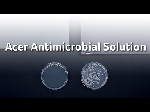 Acer Antimicrobial solution