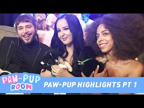 Paw-Pup Room Highlight Reel Feat. Post Malone, 4Yall, Jus Reign  + More!