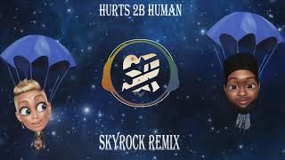 P!nk   Hurts 2B Human Ft. Khalid (Dj Skyrock Remix)