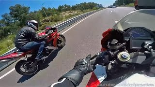 R1 vs CBR 1000RR - Friendly races | Wheelies | TOP SPEED