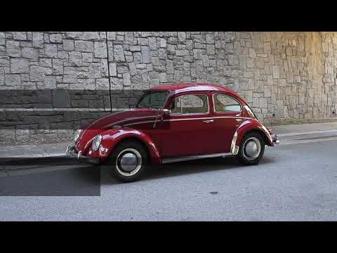 Video of '64 Beetle - QDW0