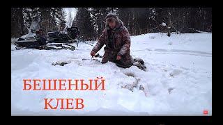 Рыбалка на июньские праздники 2020 из москвы
