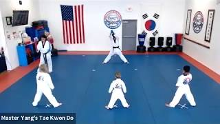Live Class - Little Tigers & Yellow Stripe - 6.26.20 @ 3pm