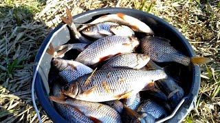 Рыбалка в чулково ленинградская область
