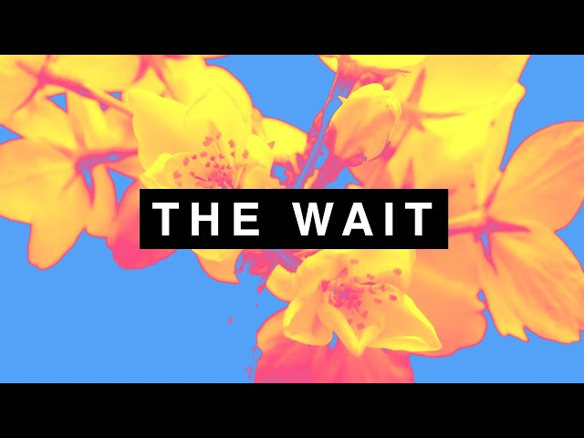 The Wait  - The Slow Readers Club