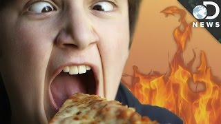 What Happens When You Burn Your Tongue?