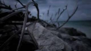 Caribou - Lalibela