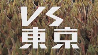 徳島県共通コンセプト「vs東京」(ブイエス・トウキョウ)
