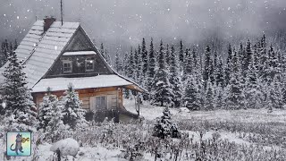 Relaxing Snowfall: Beautiful Falling Snow - The Best Relax Music