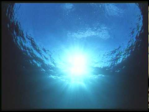5 Breathtaking Underwater Videos Made By Robots
