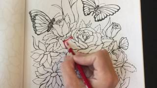 Coloring Book Tips And Techniques Using Colored Pencils