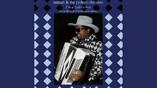 Zydeco Hog (Live / 1997)