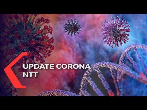 update corona ntt jumat terjadi penambahan kasus covid- di kota kupang