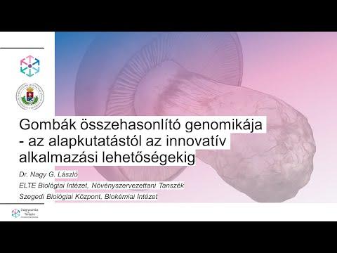 Paraziták pinworms otthoni kezelés