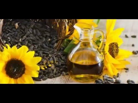 Diabética chá vita-planta