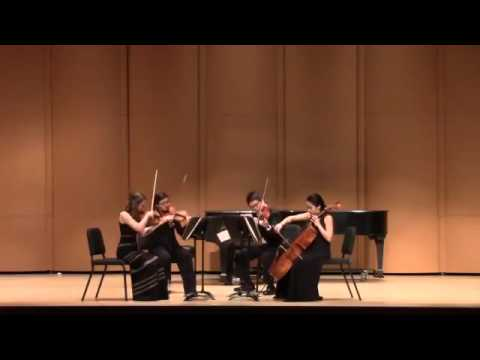 Competition Performance: