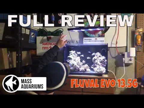 Fluval Evo 13.5 Gallon Nano Reef Tank: FULL AQUARIUM REVIEW