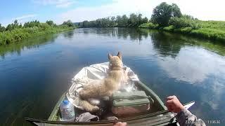 Рыбалка на реке барда пермский край