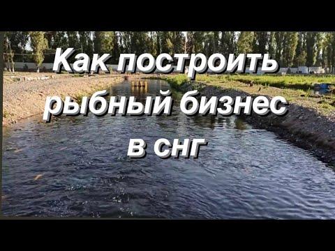 , title : 'Как построить форелевое хозяйство. Рыбный бизнес в СНГ