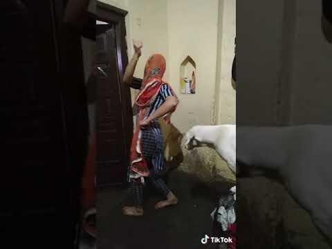 Desi girl  dance with dog in song sarabi pala padgaya.