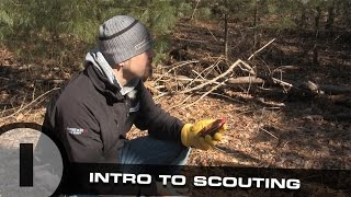 Scouting Whitetail Deer Part 1: Intro To Scouting