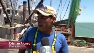 Especiales Noticias - Vaquita marina, la última oportunidad