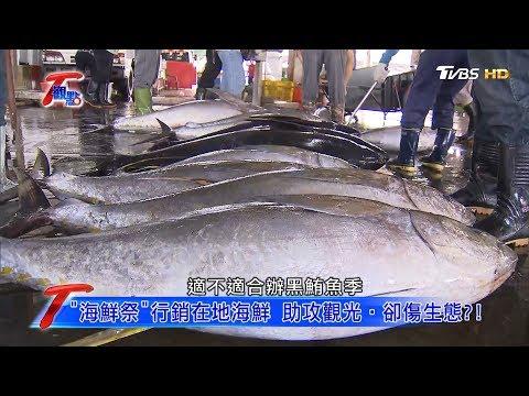 """""""海鮮祭""""行銷在地海鮮 助攻觀光.卻傷生態?! T觀點 20190907 (4/4)"""