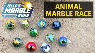 Animal Marble Race - Jelle's Marble Runs