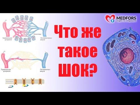 Вирусные гепатиты эпидемиология реферат