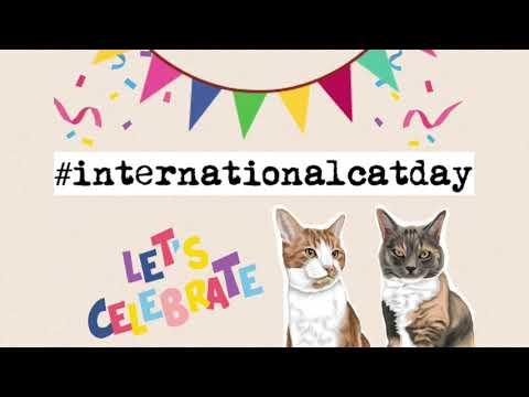 Happy International Cat Day from Kimi and Oscar