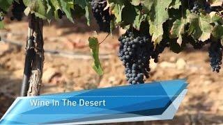 A Wine-Oasis in the Israeli Negev Desert