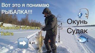 Рыбалка томске зимой