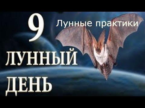 Герои меча и магии 5 5-1
