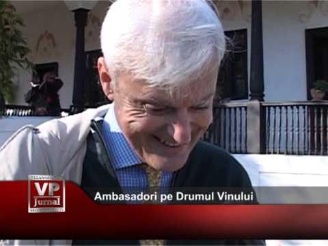 Ambasadori pe Drumul Vinului