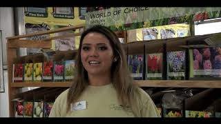 Employment at Covington's Nursery & Landscape in Rowlett, TX