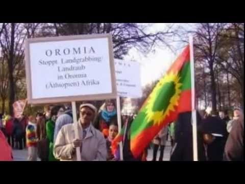 Download Oromo Music - Nuho Gobana - Isin Waamti Harmeen HD Mp4 3GP Video and MP3
