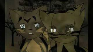 Warrior cats (Music Video)- Friday I'll Be Over U