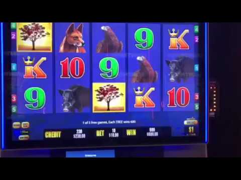 $600 Feature Big Red Gold 5 Kings Pokies Win Pokie Max Bets 호주 슬롯머신