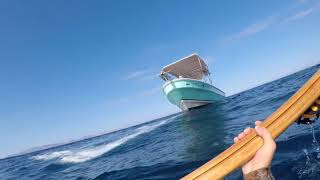 Spearfishing Mexico, July 2018